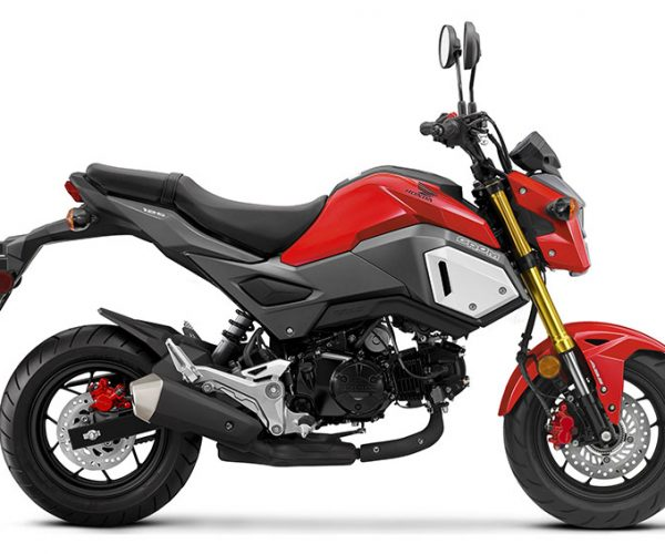 Honda Grom Aftermarket Buying Guide